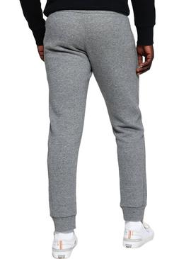 Pants Superdry Cali Jogger Gray for Man